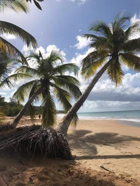 France-Guadeloupe