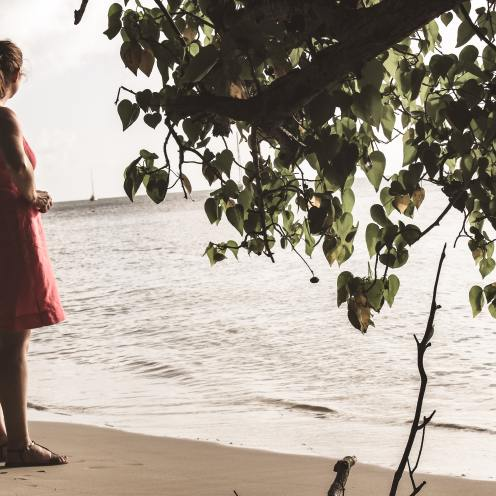 French Caribbean Beach